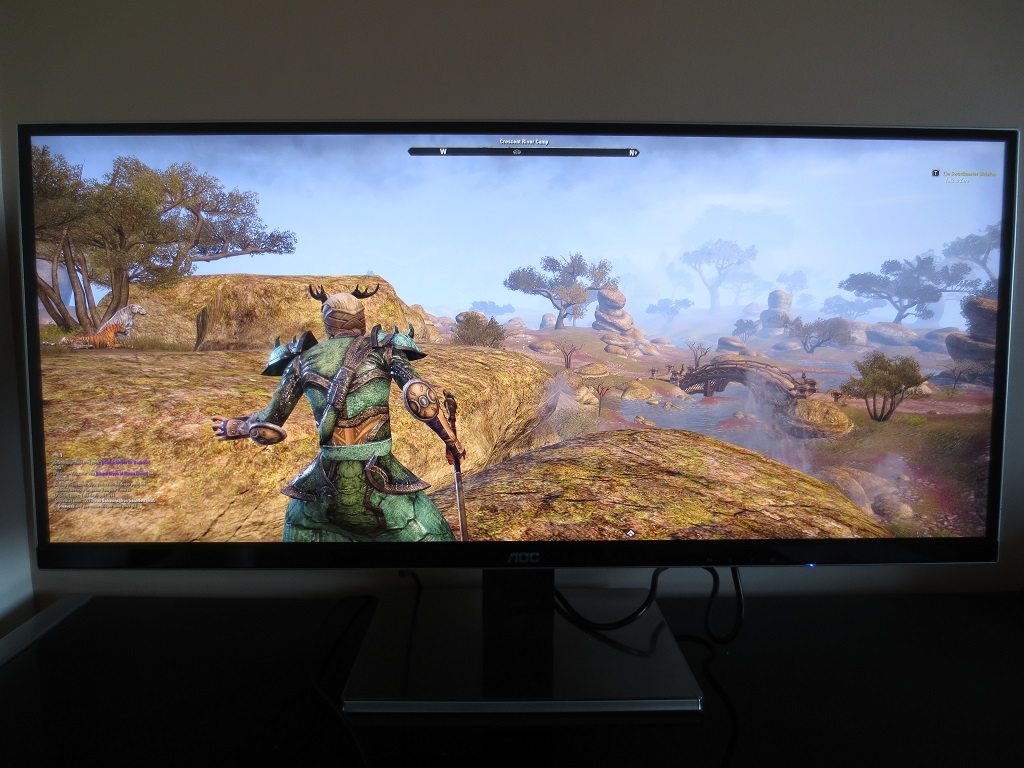 Elder Scrolls Online in the open